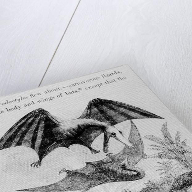 Bat-Lizards by English School
