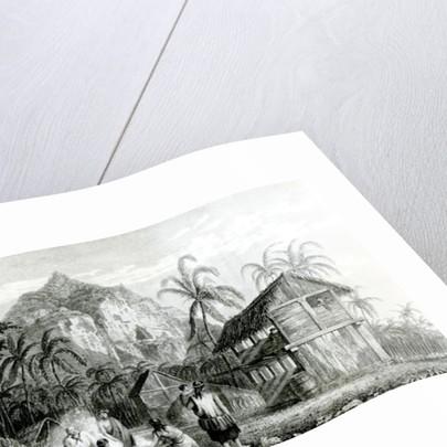 Interior of Pitcairn Island by Sir William Beechey