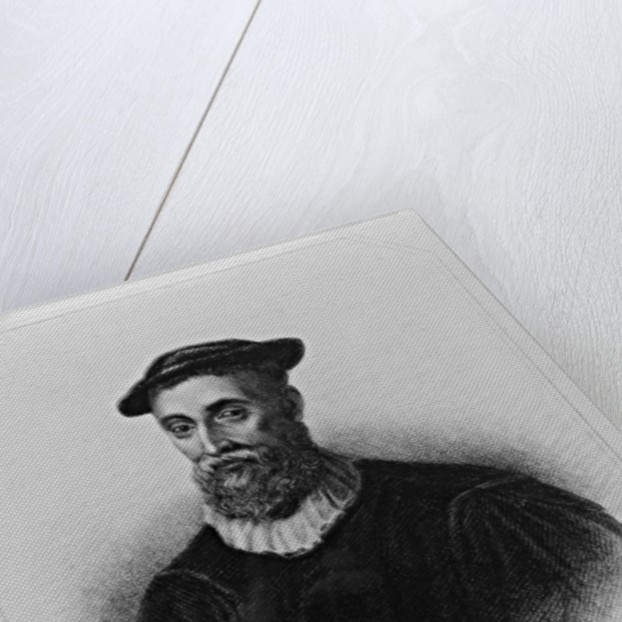 Portrait of John Knox from 'Lodge's British Portraits' by English School