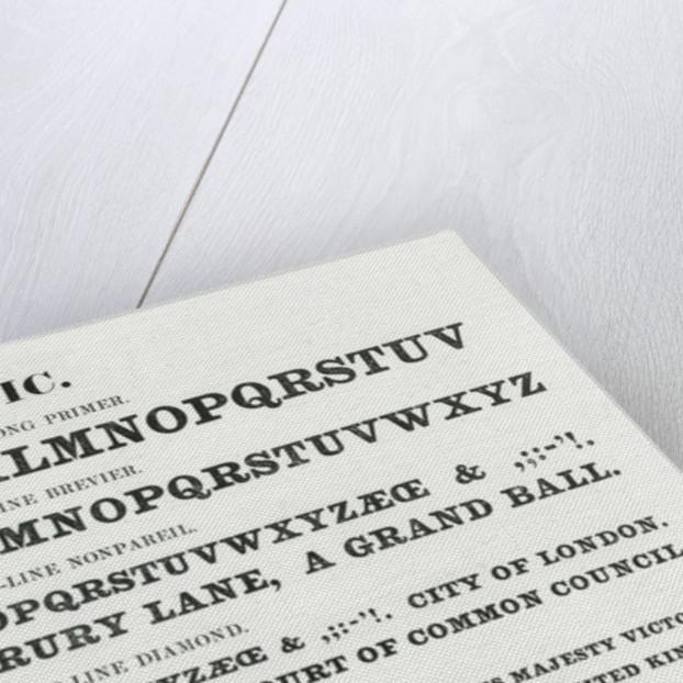 Ionic typefaces