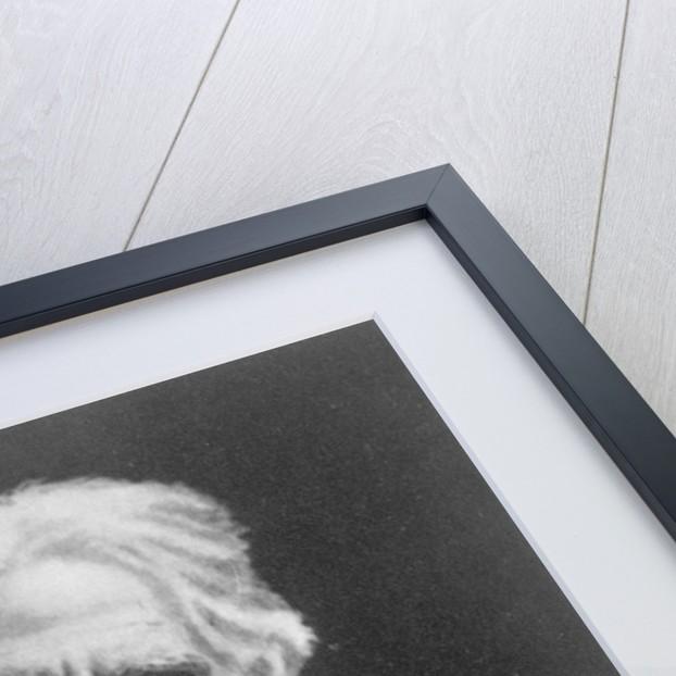 Eadweard Muybridge by English Photographer