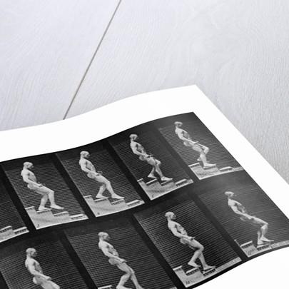 Man descending stairs by Eadweard Muybridge