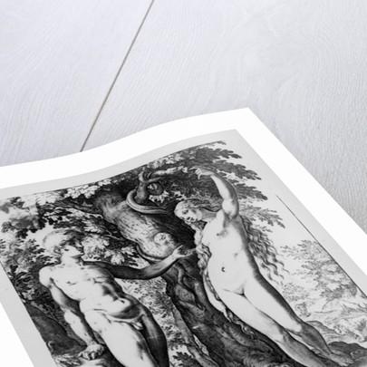 Adam and Eve by Bartholomaeus Spranger