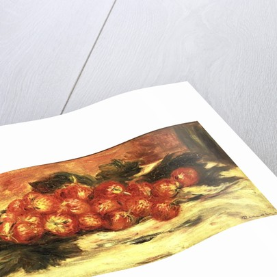 Strawberries on a White Tablecloth by Pierre Auguste Renoir