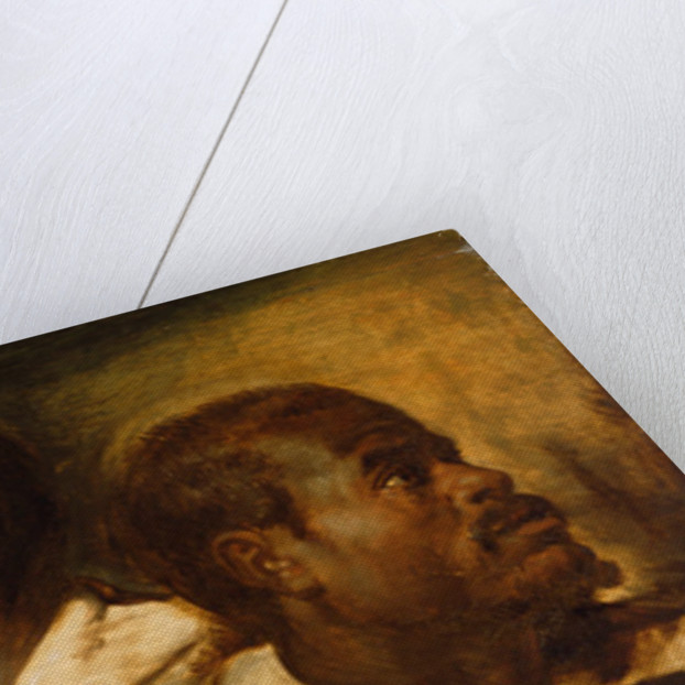 Four Studies of Male Head by Peter Paul Rubens
