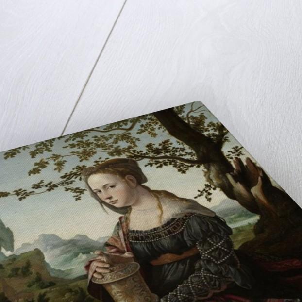 Mary Magdalene by Jan van Scorel