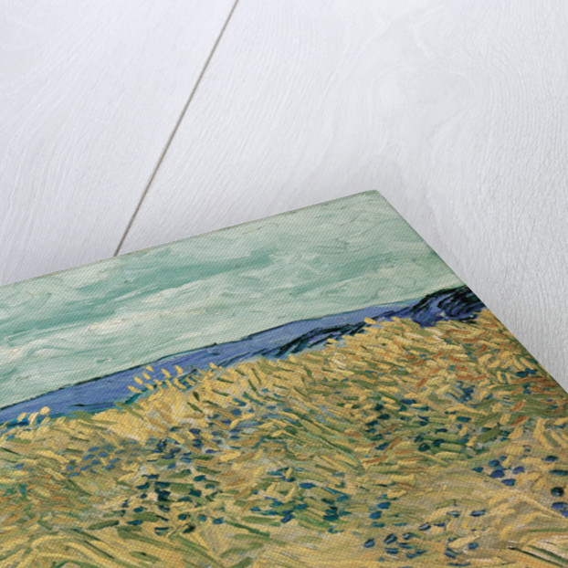 Auvers-sur-Oise by Vincent van Gogh