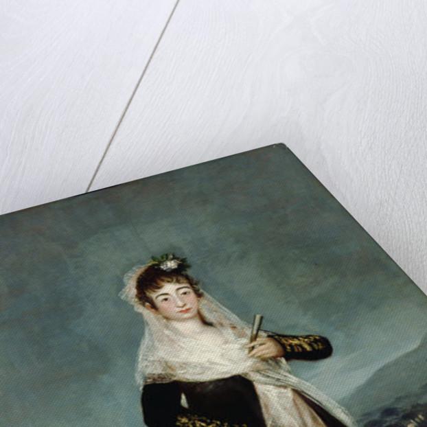 Portrait of the Marquesa de Santiago by Francisco Jose de Goya y Lucientes