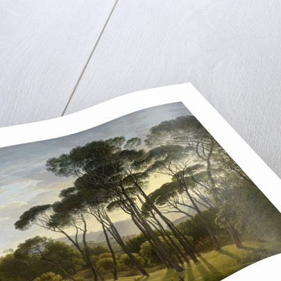 Italian Landscape with Umbrella Pines, 1807 by Hendrik Voogd