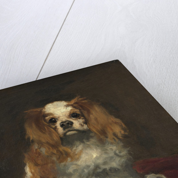 A King Charles Spaniel by Edouard Manet
