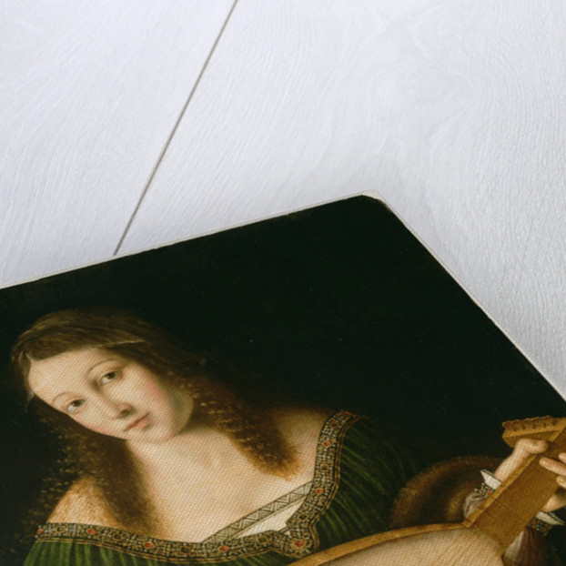 Lady Playing a Lute by Bartolomeo Veneto