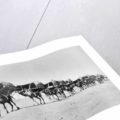 Camel caravan of pilgrims to Mecca by Anonymous