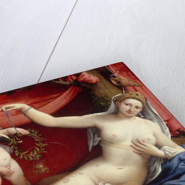 Venus and Cupid, c.1525 by Lorenzo Lotto