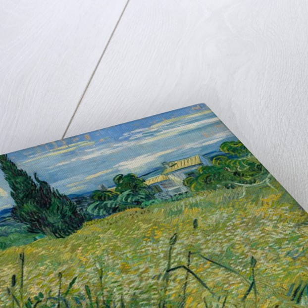 Green Wheat, 1889 by Vincent van Gogh