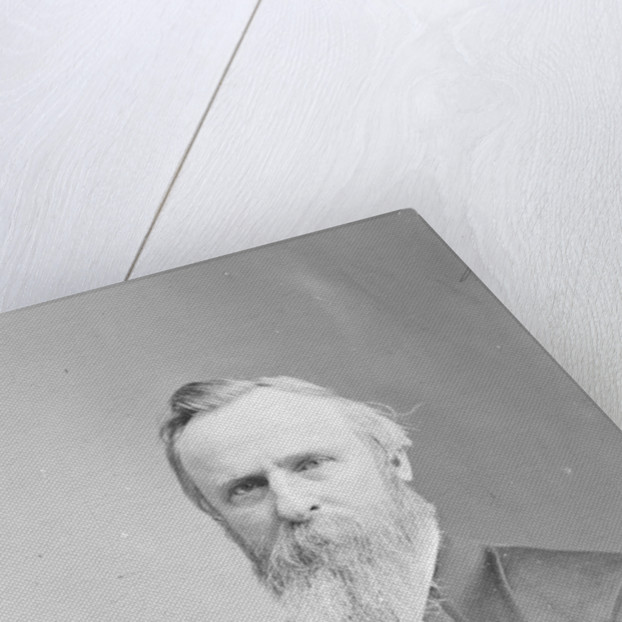 President Rutherford B. Hayes by American Photographer