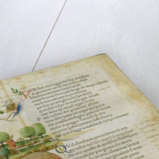 Fol. 1v, 'Per fare una leggiadra sua vendetta' by Italian School