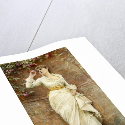 The Rose by Edward Killingworth Johnson