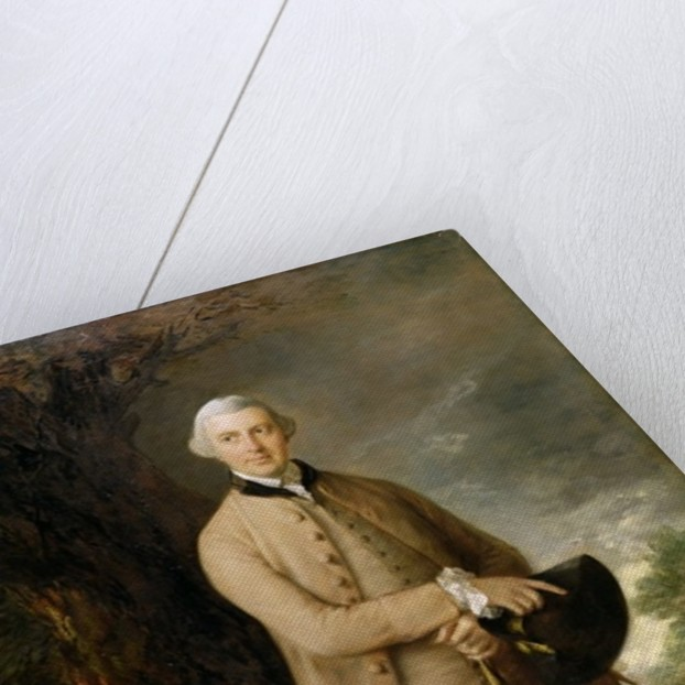 William Johnstone-Pulteney, Later 5th Baronet by Thomas Gainsborough