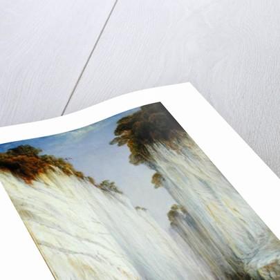 The Marble Rocks - Nerbudda Jubbolpore by Edward Lear