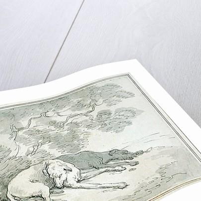 Greyhounds Asleep by Thomas Rowlandson