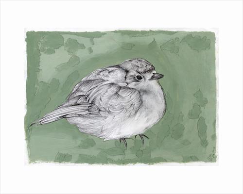 Plump Little Robin by Nancy Moniz Charalambous