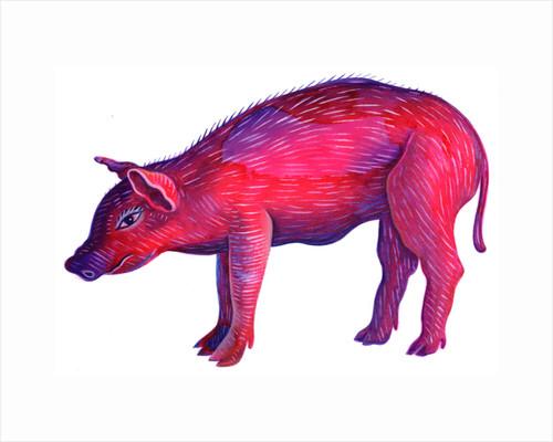 Pig, 1996 by Jane Tattersfield