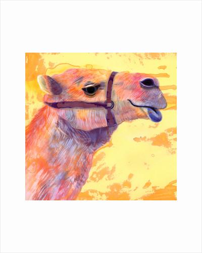 Camel, 1994 by Jane Tattersfield