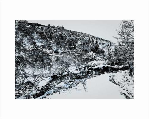Hillside Creek, by Alice Gur-Arie