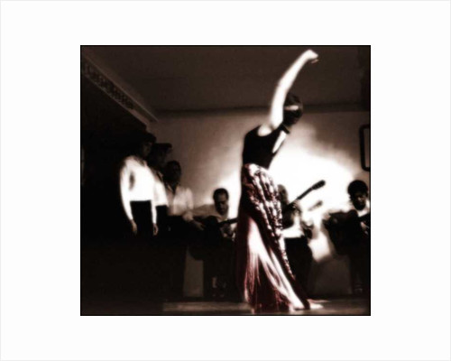 Flamenco by Pat swain