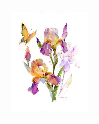 Iris with yellow butterfly, 2016 by John Keeling