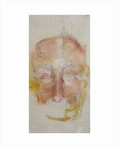 Mask of Skin by Hazel Florez