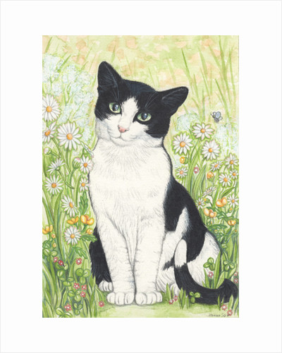 Black and White Cat with Daisies, 1995 by Joanna Scott
