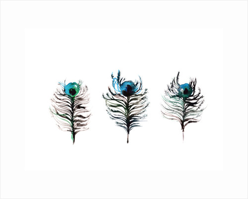 Peacock Feathers Trio by Victoria Watt