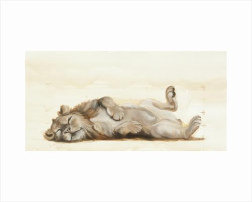 Lion roll, 2012 by FRANCESCA SANDERS