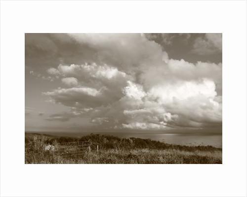 Distant Peninsular, 2012 by Paul Gillard