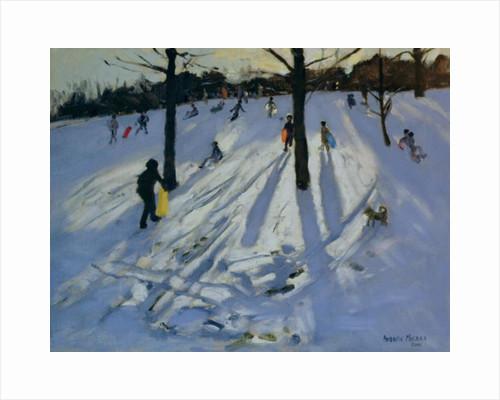 Snow, Rykneld Park, Derby by Andrew Macara