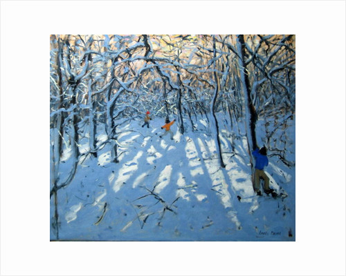 Winter woodland, near Newhaven, Derbyshire by Andrew Macara