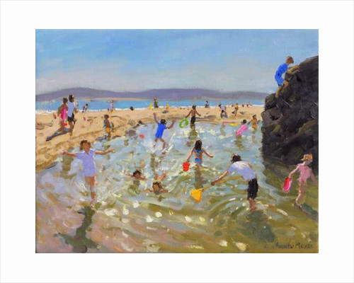 Rock pool.Tenby by Andrew Macara
