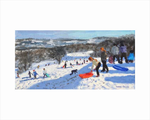The red sledge, Allestree Park, Derby by Andrew Macara