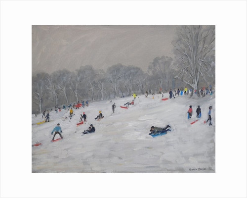 Winter, Darley Park by Andrew Macara