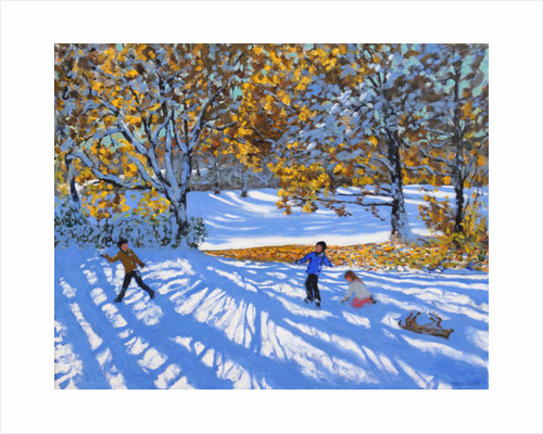 Early snow, Allestree Park, 2017 by Andrew Macara