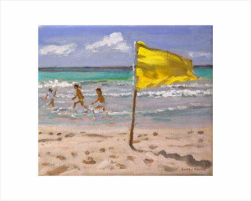 Yellow Flag, Barbados by Andrew Macara