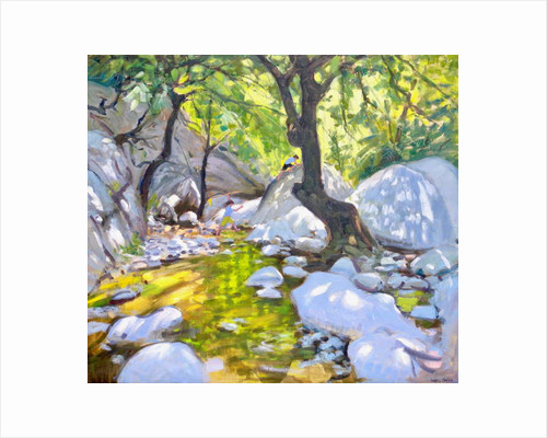 Mountain stream, Lefkas, Greece, 2009 by Andrew Macara