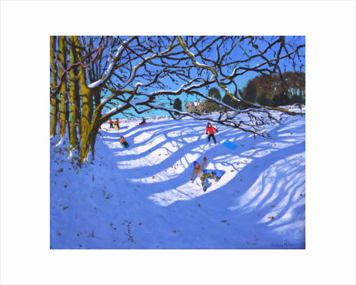 Sledging down the gully, Dam Lane, Ashbourne by Andrew Macara