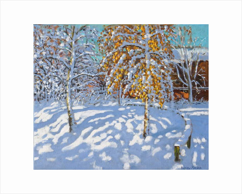 Golden leaves in winter, Normanton, Derby by Andrew Macara