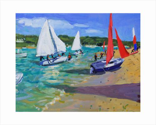 Sailing Boats, Salcombe by Andrew Macara
