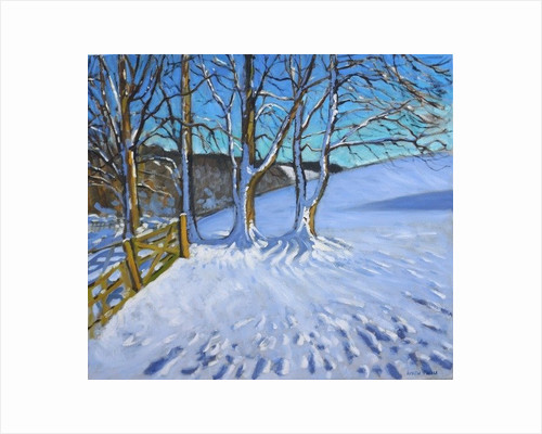 Gate and trees, Winter, Dam Lane,Derbyshire by Andrew Macara