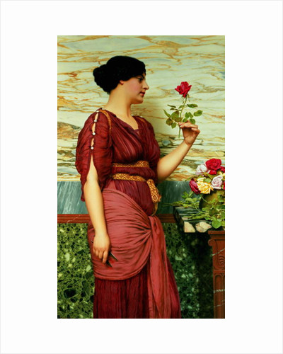 A red, red rose by John William Godward