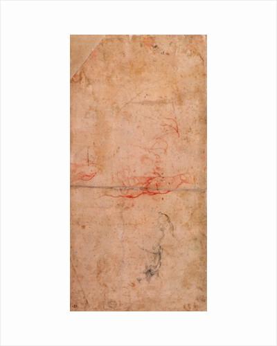 Preparatory Study for the Punishment of Haman by Michelangelo Buonarroti