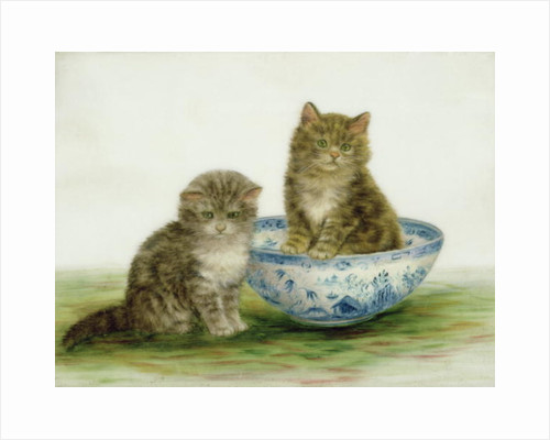 Kitten in a Blue China Bowl by Bessie Bamber